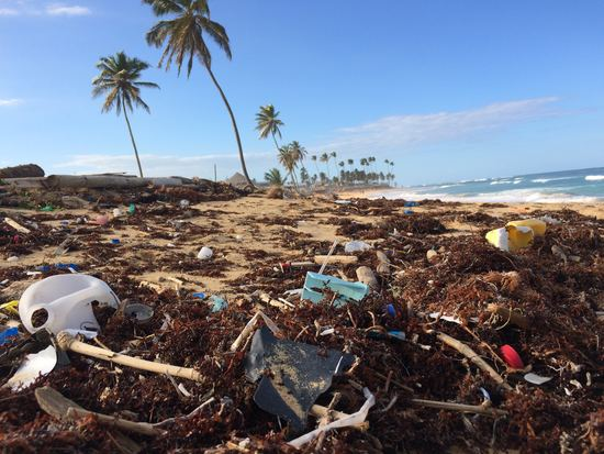 Plastic Waste